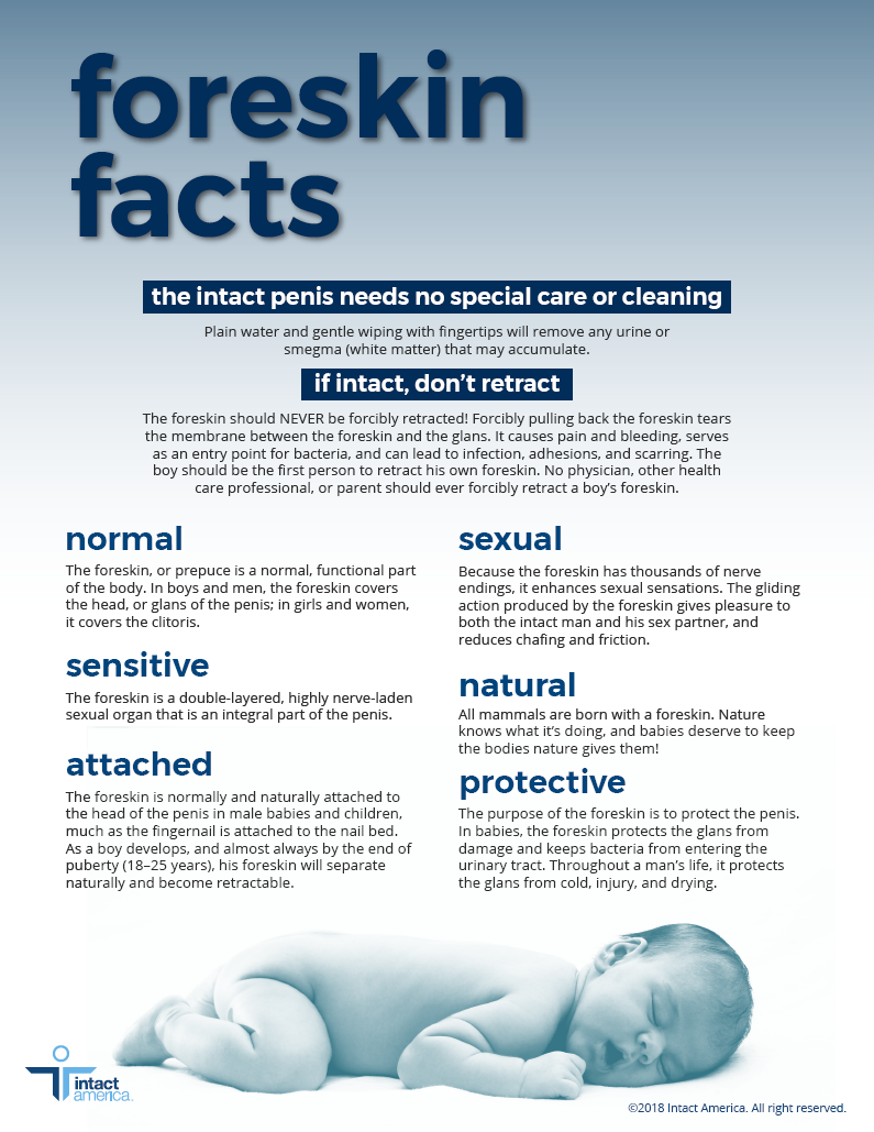 Foreskin Facts Pamphlet - Intact America